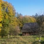46 150x150 Екскурсія у Шевченківський гай