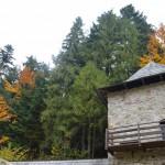DSC 0619 1024x681 150x150 Студенти ЛПБА відвідали Хресто Воздвиженський Манявський монастир