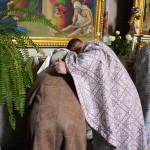 DSC 0101 150x150 ЛПБА взяла участь у храмовому святі Свято Введенської церкви смт. Брюховичі