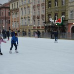DSC 0828 150x150 У ЛПБА вперше відбувся дитячий зимовий табір   веселі канікули